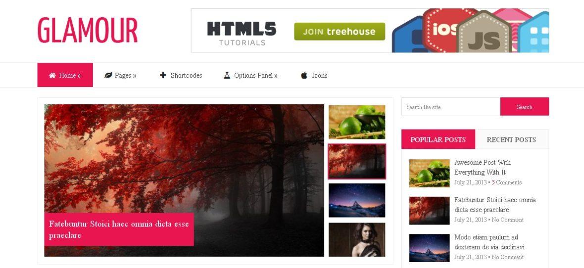 Glamour Wordpress Theme - HIGH-PERFORMANCE WPTHEME 1