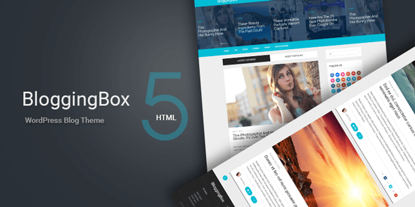 BloggingBox - Multipurpose Wordpress Themes 1