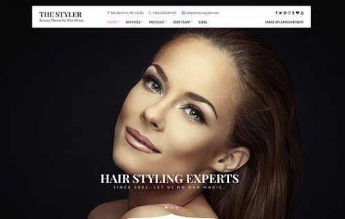 THE STYLER - CSS IGNITER WORDPRESS THEME 1