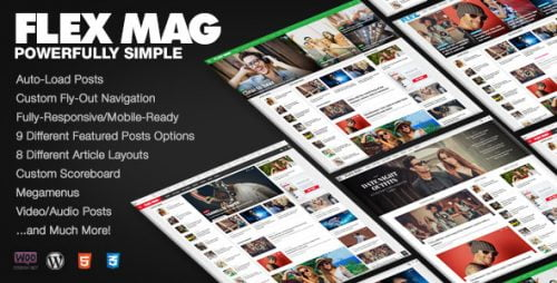Flex Mag WordPress Theme - Responsive  WP Themes 1