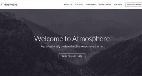 atmosphere pro theme - Creative WP Themes 1