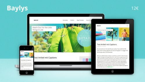 Modern WordPress Themes - Responsive  WP Themes 1